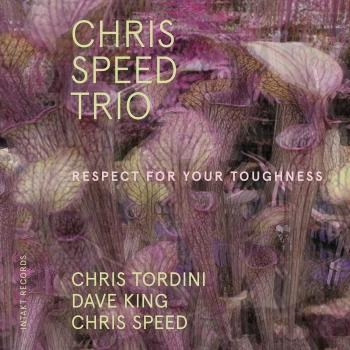 Cover Respect for Your Toughness (feat. Chris Tordini & Dave King)