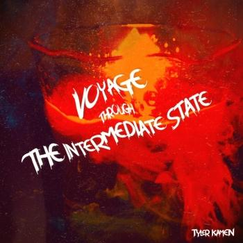 Cover Voyage Through the Intermediate State