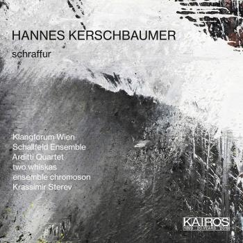 Cover Hannes Kerschbaumer: Schraffur & Other Works