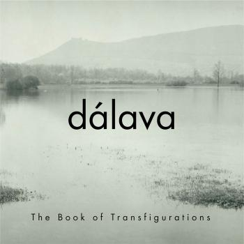 Cover The Book of Transfigurations