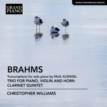 Cover Brahms: Transcriptions for Piano